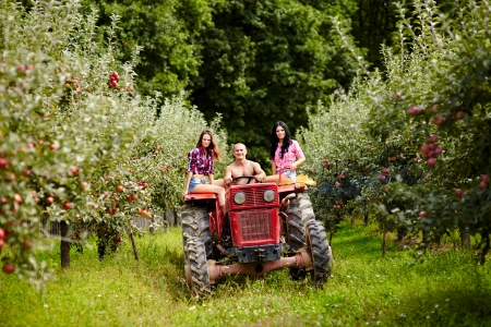 Young mixed race farmers on a tractor driving through the apple trees orchard photo