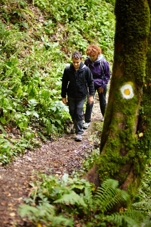 Mother and son walking on a hike trail in a forest photo