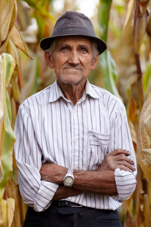 Closeup of old man with arms folded in the cornfield photo