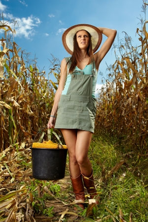 Woman farmer carrying a bucket full of corn cobs in the cornfield at harvest photo