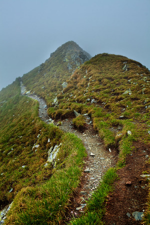 Alpine landscape with hiking trail going on the mountain in the mist