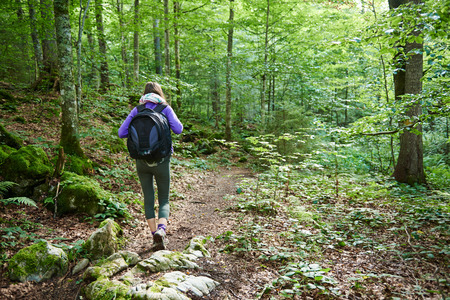Young hiker woman with backpack on a forest trail in the mountains photo