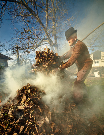 Senior farmer cleaning his garden of fallen leaves, burning them in a pile photo