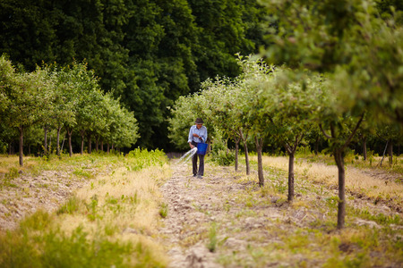 agrarian: Senior farmer spreading fertilizer from a bucket into a plum trees orchard, spring work