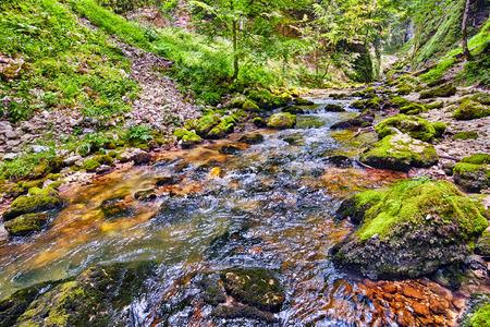 Landscape with Galbena river flowing through a canyon in Apuseni mountains, Romania photo