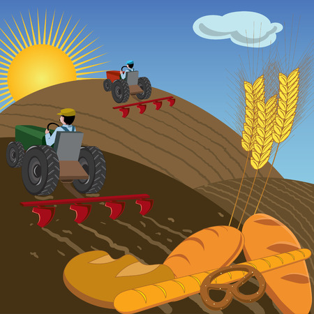 plowing: Farmers plowing the land with tractors, with bread and wheat ears in foreground