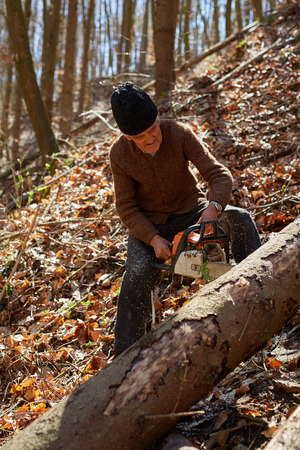 woodcutter: Senior caucasian man woodcutter cutting down trees with chainsaw Stock Photo