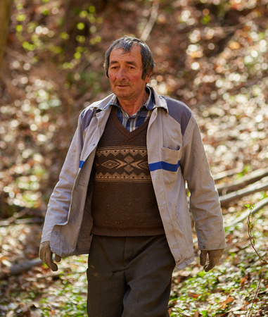 woodcutter: Old caucasian woodcutter moving in the forest to mark a tree for cutting Stock Photo