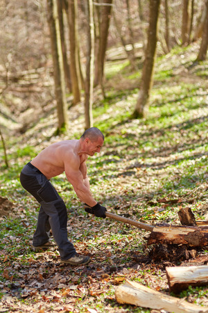 splitting: Strong caucasian shirtless woodcutter splitting wood in the forest with an ax Stock Photo