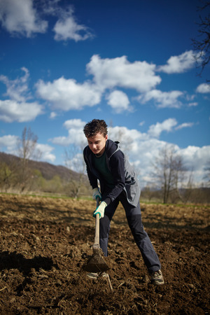 potato tree: Teenager boy covering the rows of cultivated potatoes Stock Photo