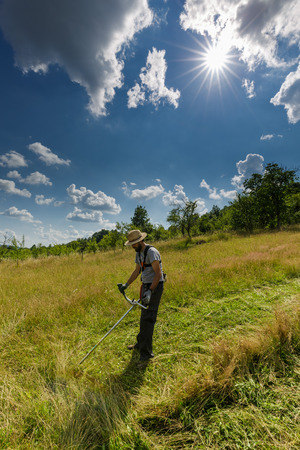 trimmer: Young farmer mowing the lawn with a trimmer
