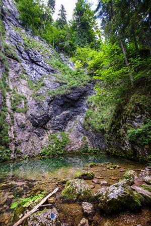 hydrological: Izbucul Tauzului, karstic spring and underwater cave in Romania, Apuseni national park