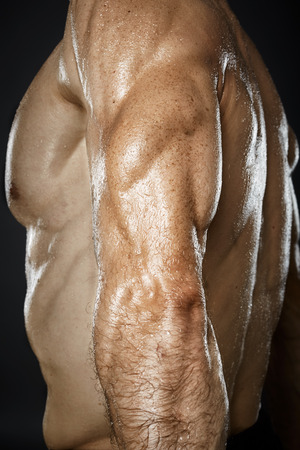 triceps: Male bodybuilder displaying triceps muscle in closeup