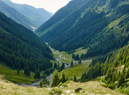 pine creek: Mountain landscape with afforested valley and a small river
