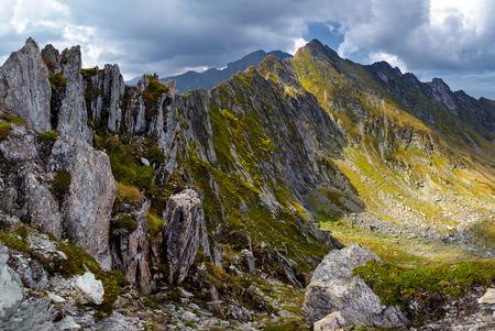 風景: 美しい夏の日の山の風景
