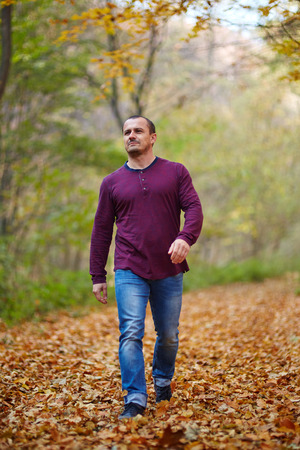 casual people: Caucasian man taking a walk in the forest, autumnal landscape