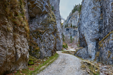 canyon walls: Landscape with a beautiful canyon and high mountain walls Stock Photo