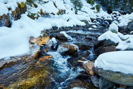 water frozen: Winter landscape with mountain river and fir forest