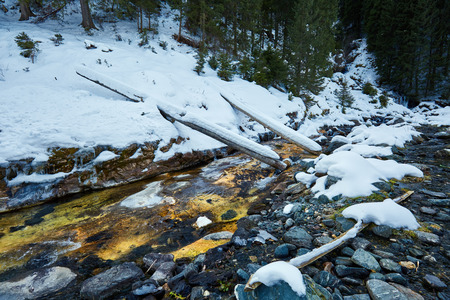 pine creek: Winter landscape with mountain river and fir forest