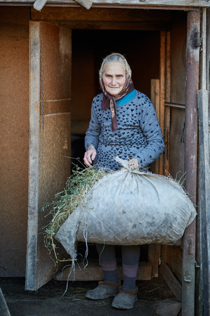 feed the poor: Senior woman with pile of hay at the stable entrance Stock Photo