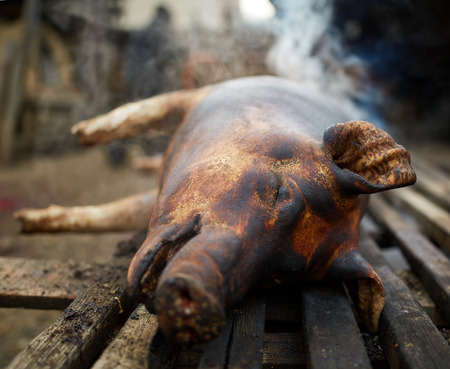 pig skin: Pig with burnt skin left to rest before getting butchered Stock Photo