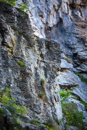 abrupt: Landscape with limestone cliffs on mountain, geology subject