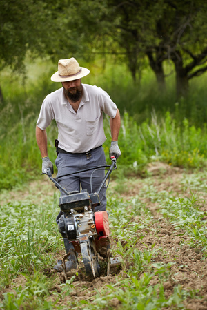 motorized: Young farmer weeding in a corn field with a motorized tiller Stock Photo