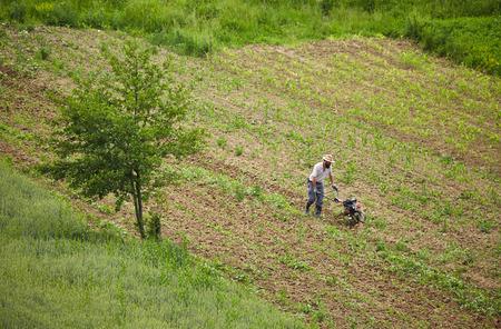 motorizado: Vista a�rea de un agricultor deshierbe en un campo de ma�z con una ca�a de tim�n motorizado