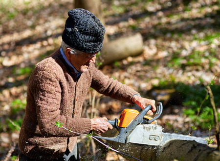woodcutter: Old woodcutter working with chainsaw on a beech log