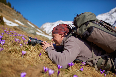 Hiker with camera taking photos of crocus flowers on mountain slope photo