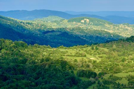 Montagnes couvertes complètement dans les forêts à feuilles caduques