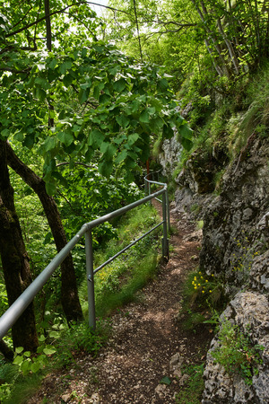 Hiking trail in the mountains with lush vegetation Banque d'images