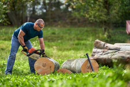 Lumberjack cutting beech logs with the chainsaw Imagens