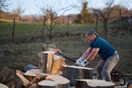 Strong woodman splitting huge beech logs with his heavy axe