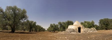panoramic - view of trullo, puglia photo
