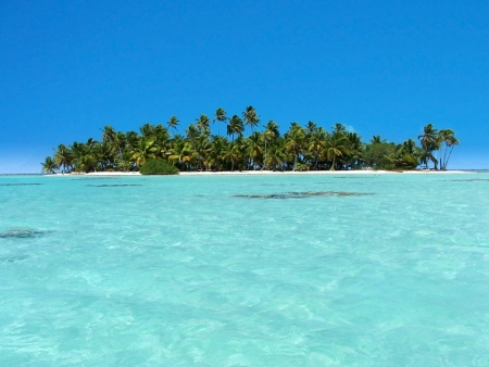 Polinesia의 환상적인 색과 독특한 위치 스톡 콘텐츠