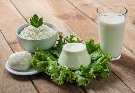Dairy products. Sour cream, milk, cheese, mozzarella, ricotta Archivio Fotografico