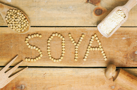 soy word with wood background - food