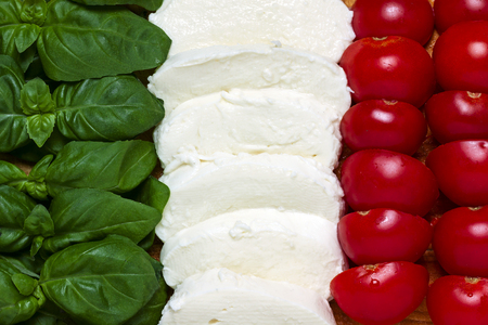 Italian tricolor with basil, tomato, mozzarella Reklamní fotografie