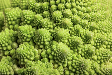 seamless background from Roman cauliflower
