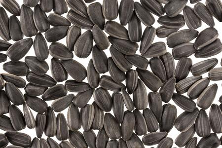 semillas de girasol: Semillas de girasol de negro. Para la textura o de fondo