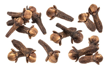 Clove spice closeup isolated on white, with clipping path Archivio Fotografico