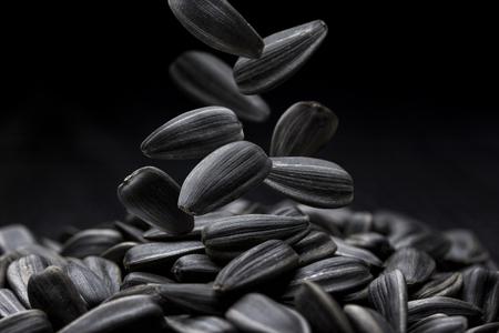 sunflower seeds: Black sunflower seeds close-up