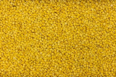 Yellow lentils background