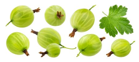 Green gooseberry isolated on white background, collection Stock Photo