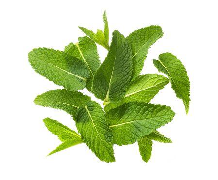 Montón de hojas de menta aislado sobre fondo blanco, vista superior Foto de archivo