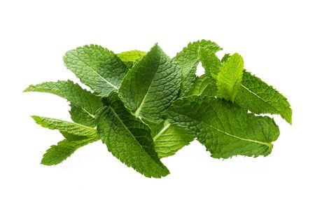 Pile of mint leaves isolated on white background with clipping path, top view