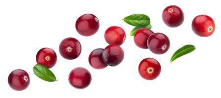 Cranberry isolated on white background with clipping path