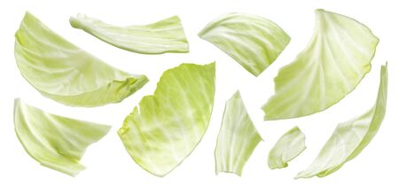Sliced cabbage isolated on white background, top view Reklamní fotografie