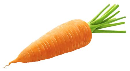 One whole carrot isolated on white background Reklamní fotografie